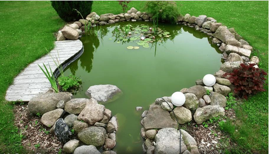 Installation de bassin de jardin : ce qu'il faut savoir